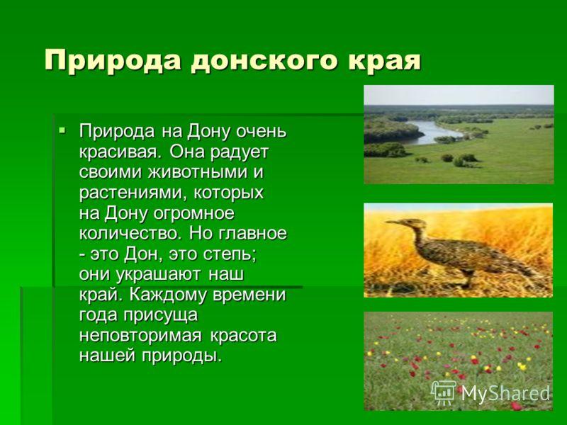 Природа донского края Природа донского края Природа на Дону очень красивая. Она радует своими животными и растениями, которых на Дону огромное количество. Но главное - это Дон, это степь; они украшают наш край. Каждому времени года присуща неповторим