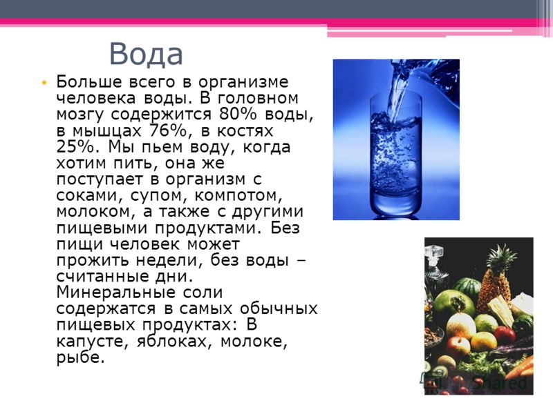Вода Больше всего в организме человека воды. В головном мозгу содержится 80% воды, в мышцах 76%, в костях 25%. Мы пьем воду, когда хотим пить, она же поступает в организм с соками, супом, компотом, молоком, а также с другими пищевыми продуктами. Без