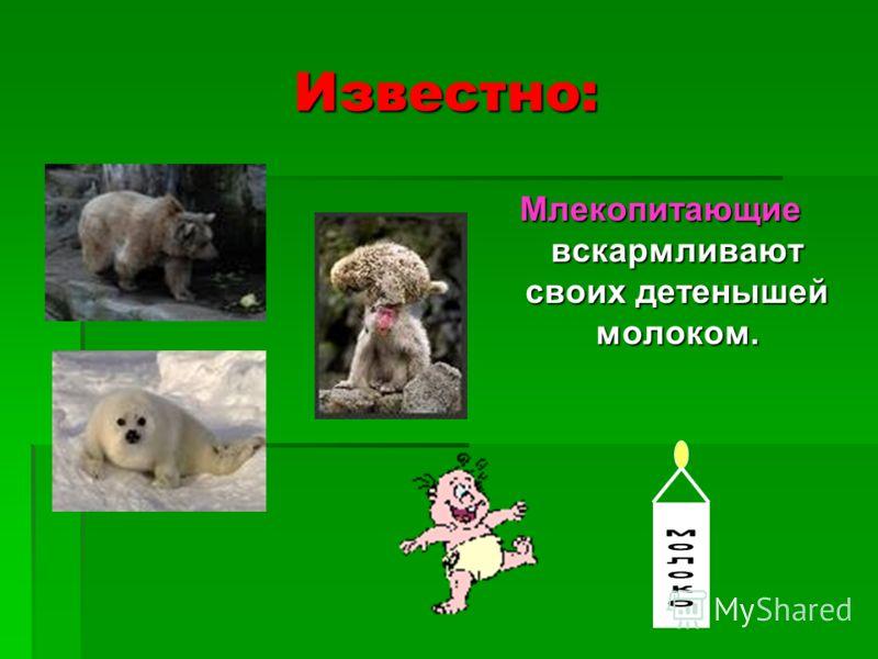 Известно: Млекопитающие вскармливают своих детенышей молоком.