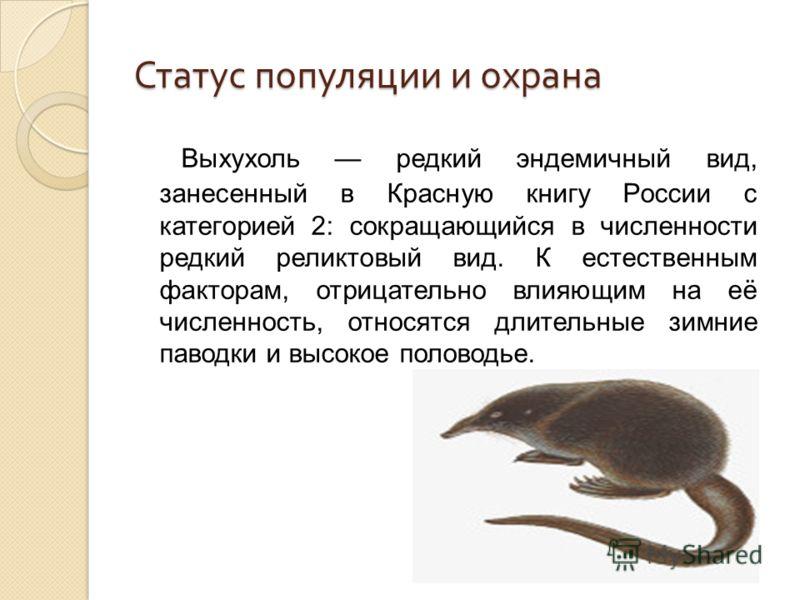 Статус популяции и охрана Выхухоль редкий эндемичный вид, занесенный в Красную книгу России с категорией 2: сокращающийся в численности редкий реликтовый вид. К естественным факторам, отрицательно влияющим на её численность, относятся длительные зимн