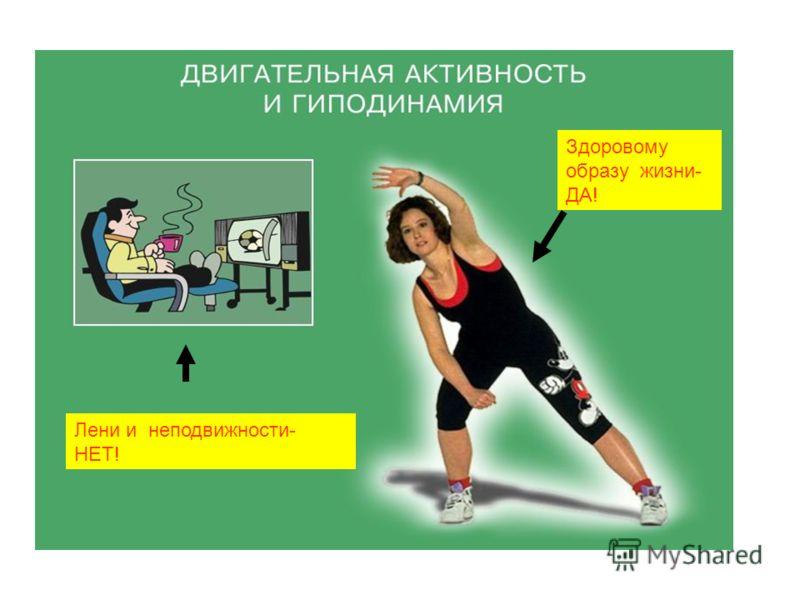 Здоровому образу жизни- ДА! Лени и неподвижности- НЕТ!