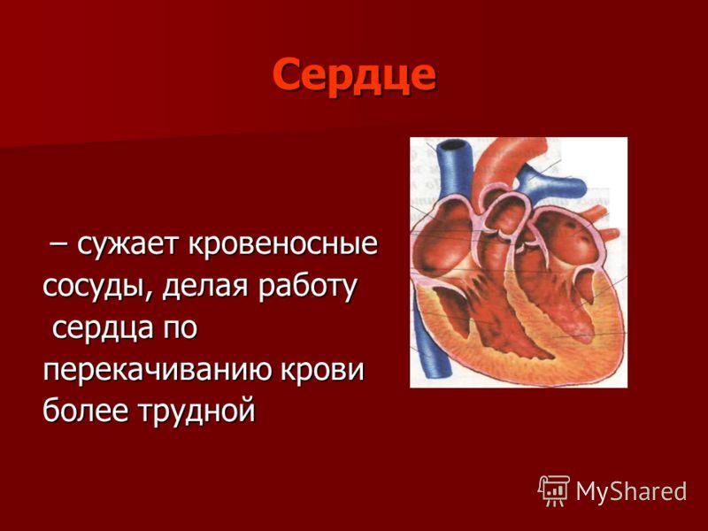 Сердце – сужает кровеносные – сужает кровеносные сосуды, делая работу сердца по сердца по перекачиванию крови более трудной