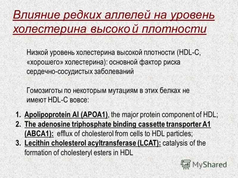 Влияние редких аллелей на уровень холестерина высокой плотности Низкой уровень холестерина высокой плотности (HDL-C, «хорошего» холестерина): основной фактор риска сердечно-сосудистых заболеваний Гомозиготы по некоторым мутациям в этих белках не имею