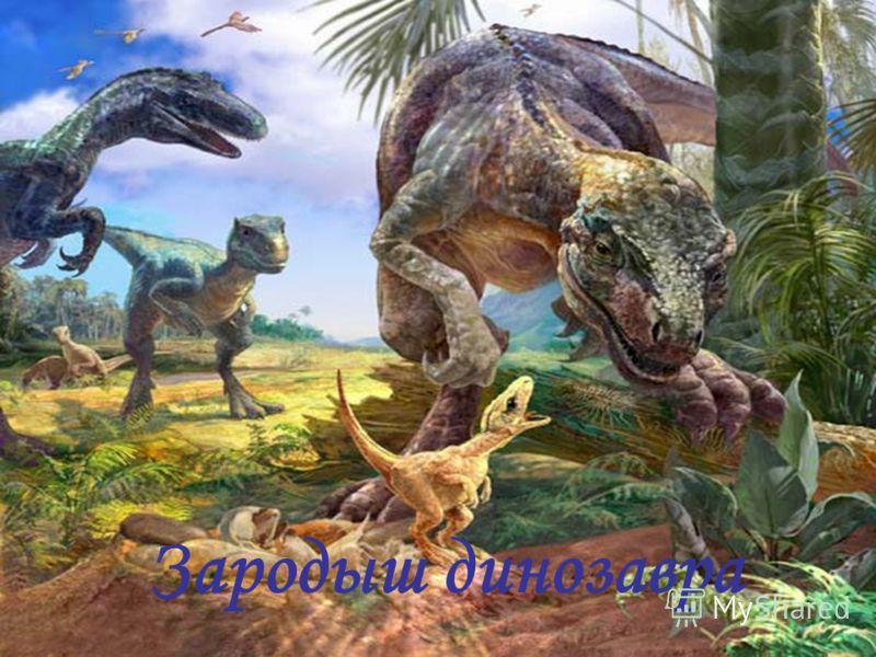 Зародыш динозавра