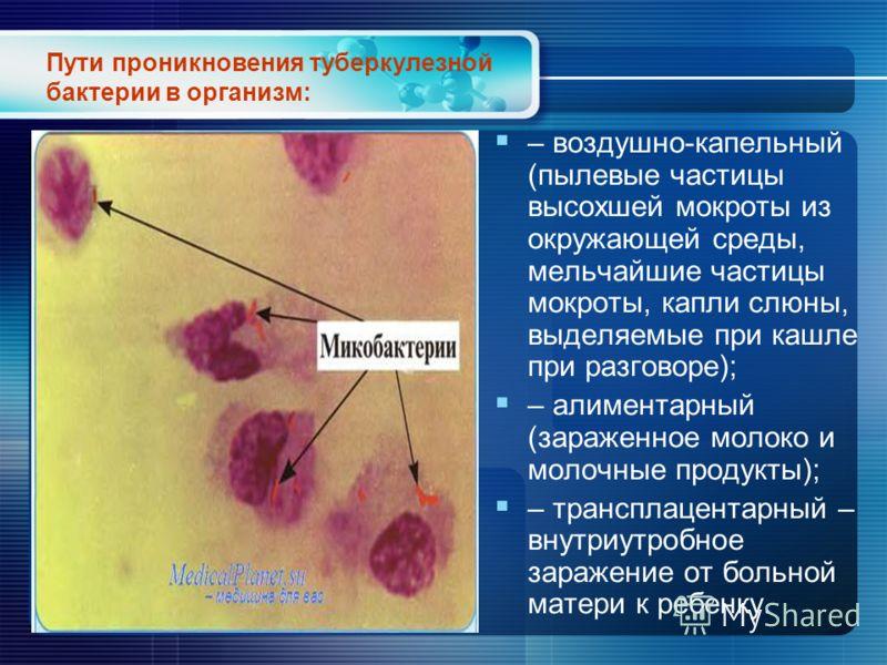 Пути проникновения туберкулезной бактерии в организм: – воздушно-капельный (пылевые частицы высохшей мокроты из окружающей среды, мельчайшие частицы мокроты, капли слюны, выделяемые при кашле при разговоре); – алиментарный (зараженное молоко и молочн