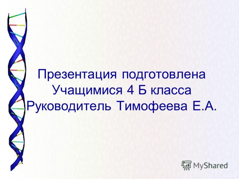Презентация подготовлена Учащимися 4 Б класса Руководитель Тимофеева Е.А.