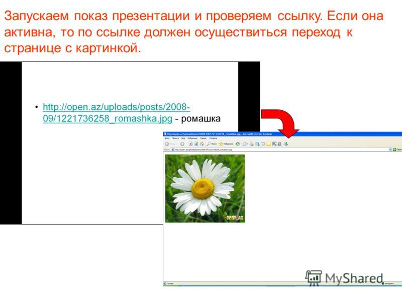 Запускаем показ презентации и проверяем ссылку. Если она активна, то по ссылке должен осуществиться переход к странице с картинкой.