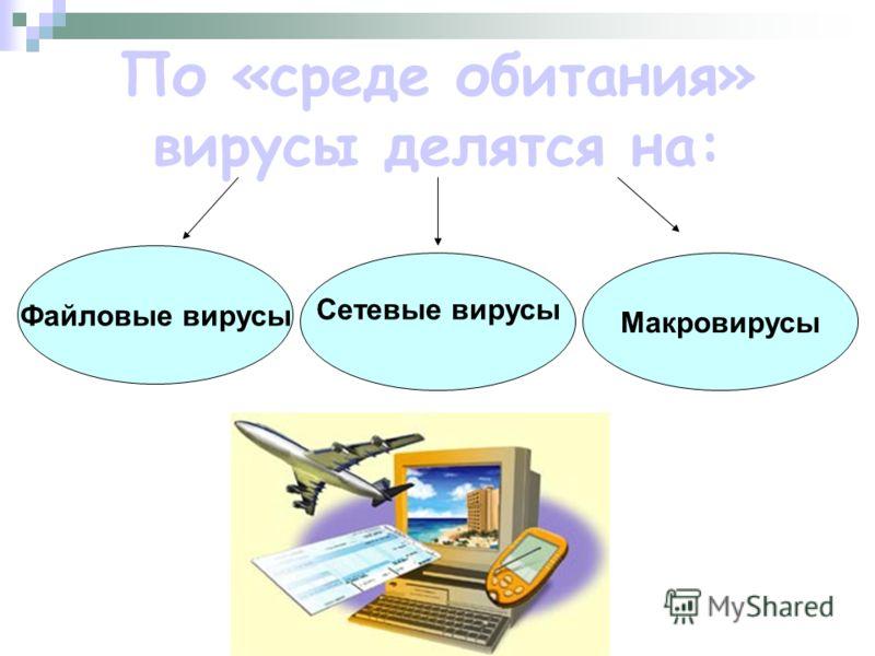 По «среде обитания» вирусы делятся на: Файловые вирусы Сетевые вирусы Макровирусы