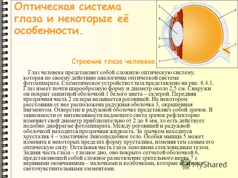 Оптическая система глаза и некоторые её особенности. Строение глаза человека. Глаз человека представляет собой сложную оптическую систему, которая по своему действию аналогична оптической системе фотоаппарата. Схематическое устройство глаза представл