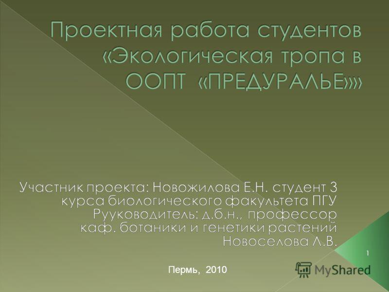 1 Пермь, 2010