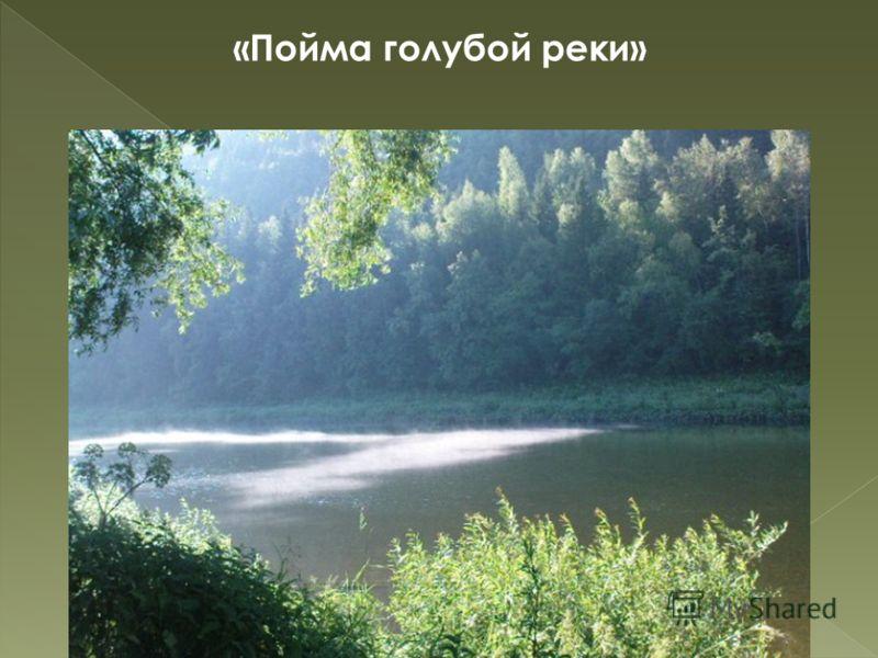 «Пойма голубой реки» 16
