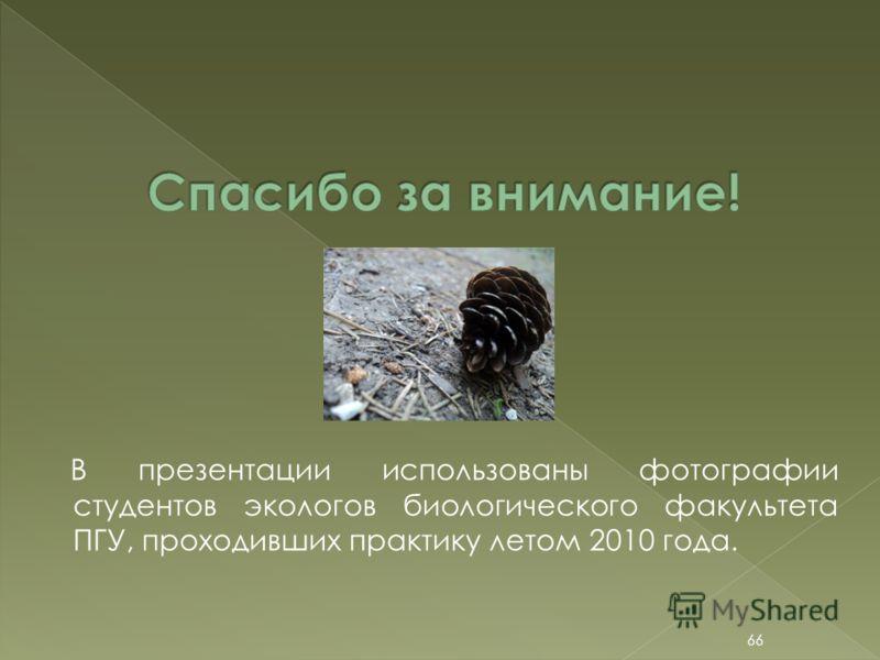 В презентации использованы фотографии студентов экологов биологического факультета ПГУ, проходивших практику летом 2010 года. 66