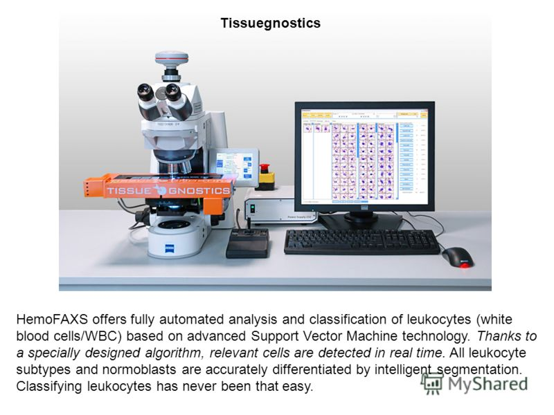 HemoFAXS offers fully automated analysis and classification of leukocytes (white blood cells/WBC) based on advanced Support Vector Machine technology. Thanks to a specially designed algorithm, relevant cells are detected in real time. All leukocyte s