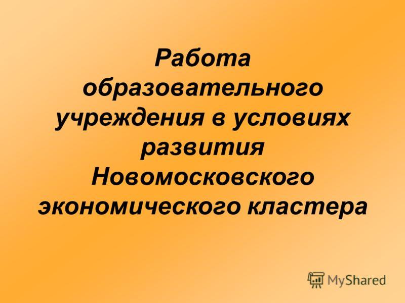 Работа образовательного учреждения в условиях развития Новомосковского экономического кластера