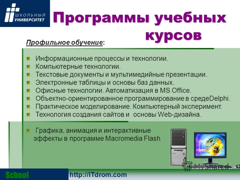 Профильное обучение: Информационные процессы и технологии. Компьютерные технологии. Текстовые документы и мультимедийные презентации. Электронные таблицы и основы баз данных. Офисные технологии. Автоматизация в MS Office. Объектно-ориентированное про