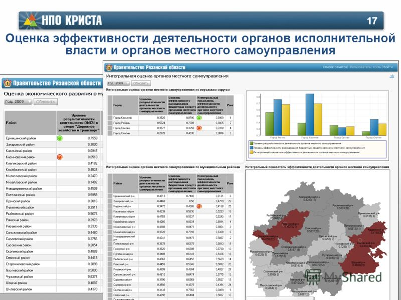 Оценка эффективности деятельности органов исполнительной власти и органов местного самоуправления 17