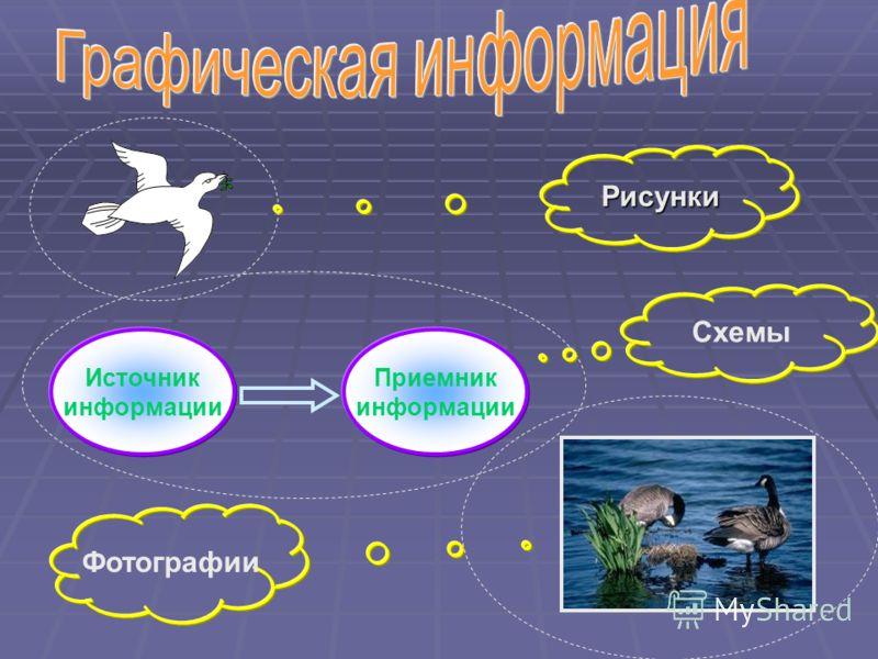 Рисунки Источник информации Приемник информации Схемы Фотографии
