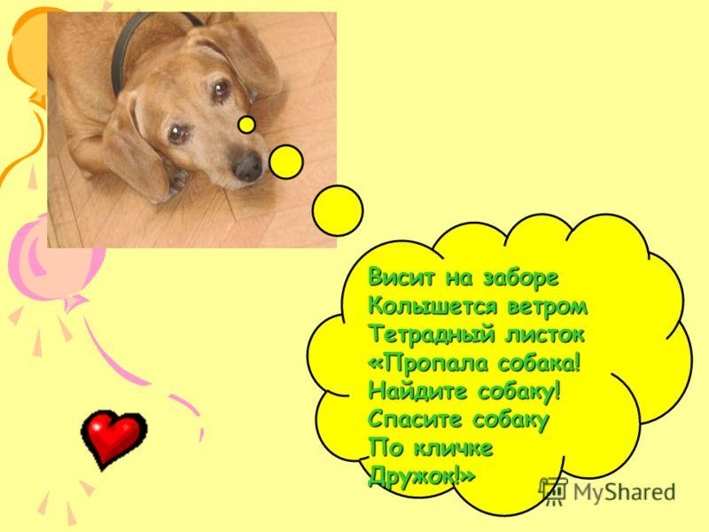 Висит на заборе Колышется ветром Тетрадный листок «Пропала собака! Найдите собаку! Спасите собаку По кличке Дружок!»