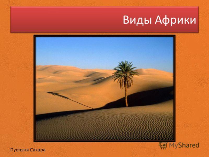 Виды Африки Пустыня Сахара
