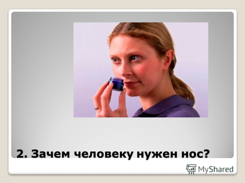 2. Зачем человеку нужен нос?