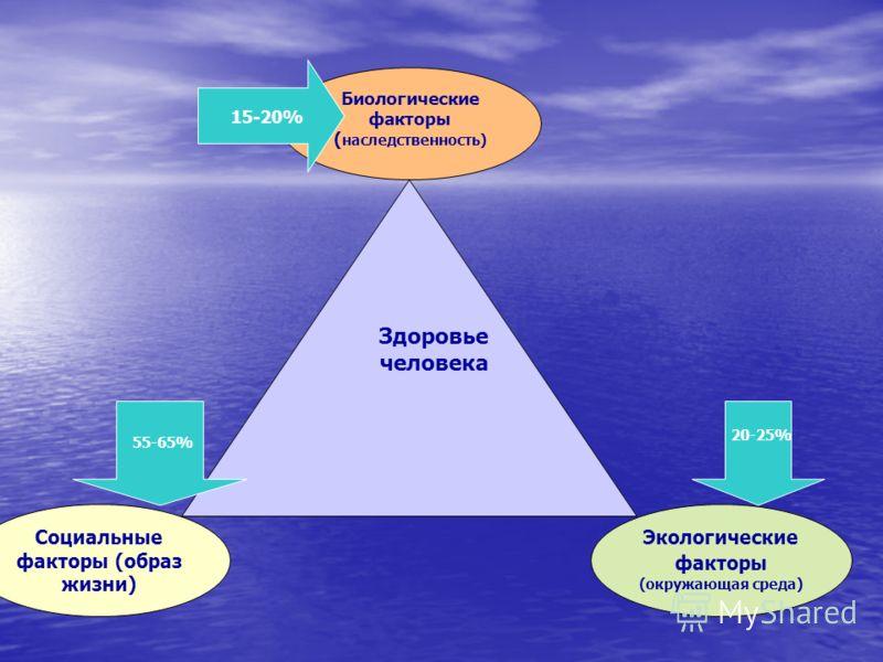 Социальные факторы (образ жизни) Биологические факторы ( наследственность) Экологические факторы (окружающая среда) Здоровье человека 15-20% 55-65% 20-25%