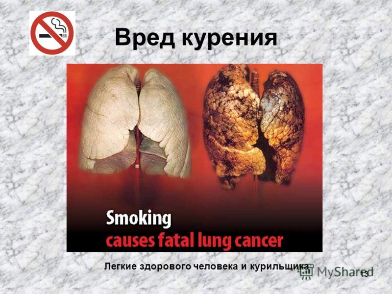 13 Вред курения Легкие здорового человека и курильщика