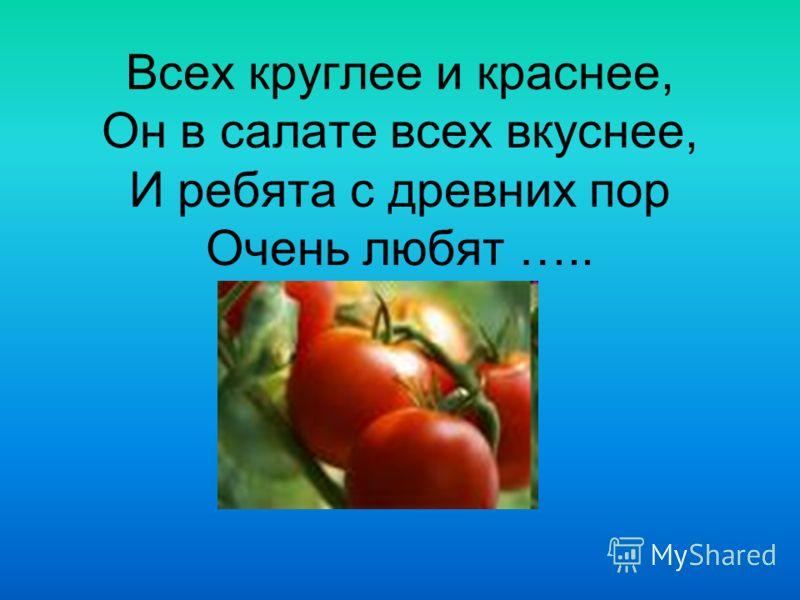 Всех круглее и краснее, Он в салате всех вкуснее, И ребята с древних пор Очень любят …..