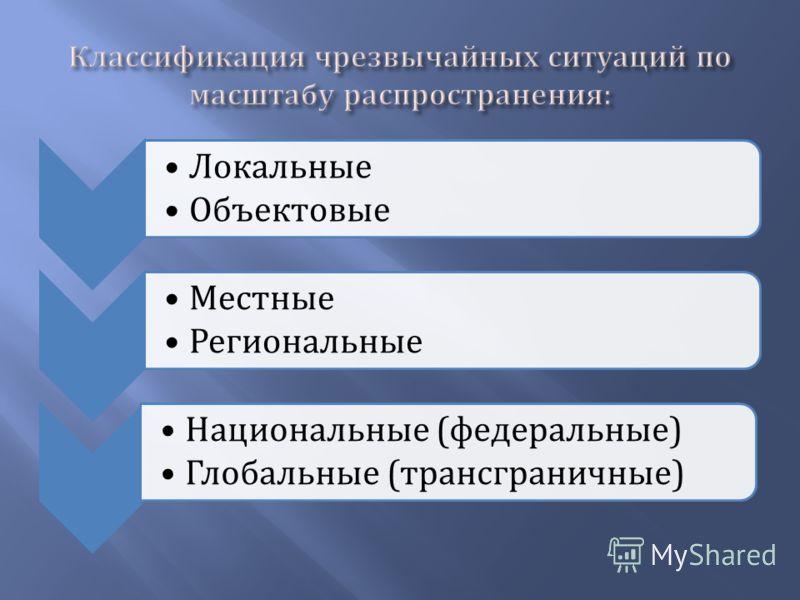 Локальные Объектовые Местные Региональные Национальные ( федеральные ) Глобальные ( трансграничные )