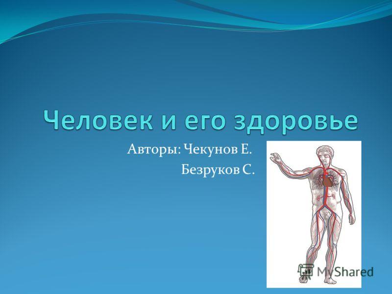 Авторы: Чекунов Е. Безруков С.