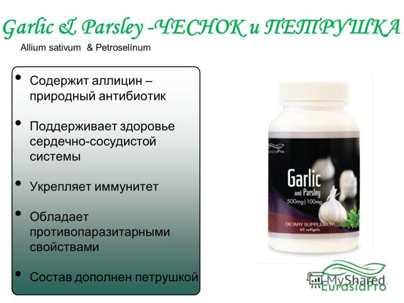 Garlic & Parsley -ЧЕСНОК и ПЕТРУШКА Allium sativum & Petroselínum Содержит аллицин – природный антибиотик Поддерживает здоровье сердечно-сосудистой системы Укрепляет иммунитет Обладает противопаразитарными свойствами Состав дополнен петрушкой