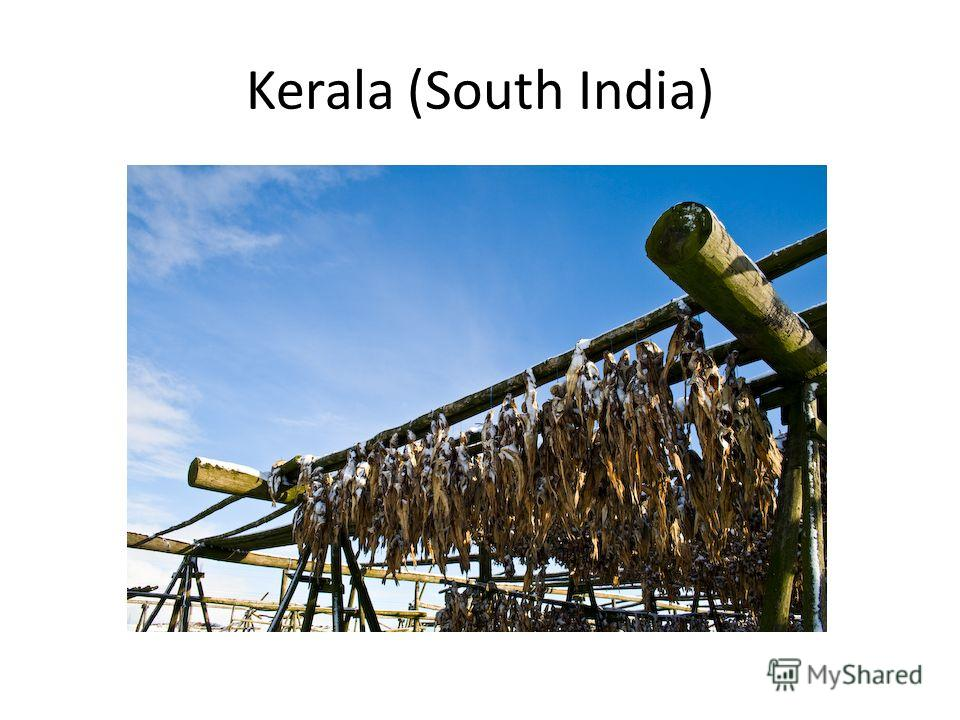Kerala (South India)
