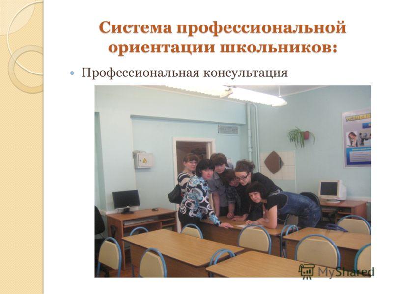 Система профессиональной ориентации школьников: Профессиональная консультация