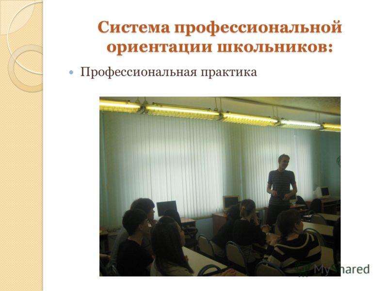 Система профессиональной ориентации школьников: Профессиональная практика