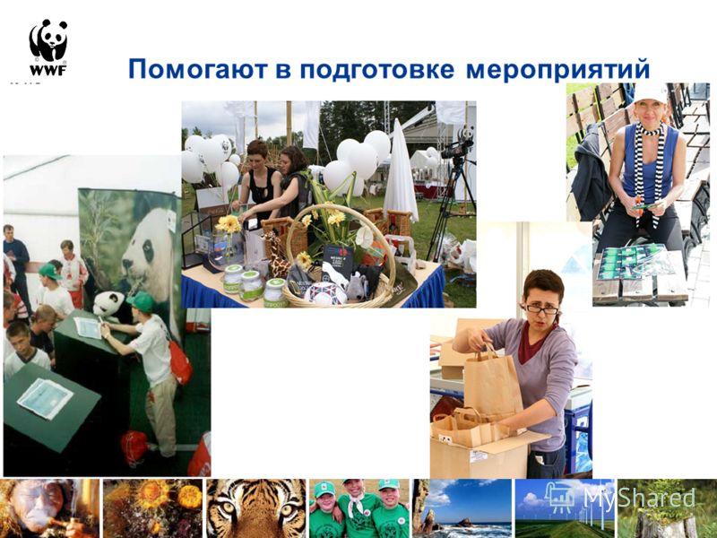 Помогают в подготовке мероприятий Принята в 2004 году и действует до 2010 года Механизм взаимодействия основных международных и национальных организаций в отношении развития и поддержки сети ОПТ Механизм привлечения средств и управления потоками сред