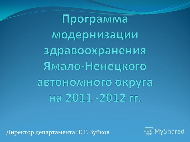 Директор департамента: Е.Г. Зуйков 1
