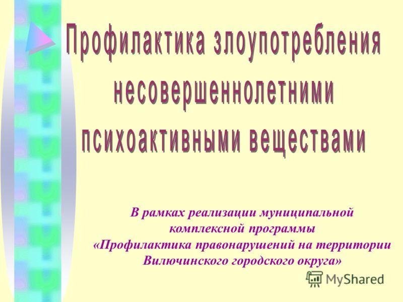 В рамках реализации муниципальной комплексной программы «Профилактика правонарушений на территории Вилючинского городского округа»