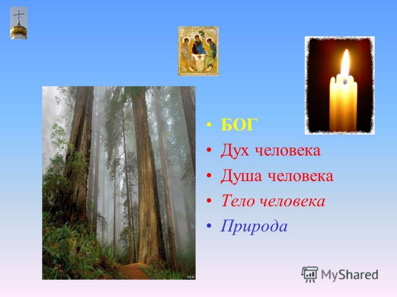 БОГ Дух человека Душа человека Тело человека Природа