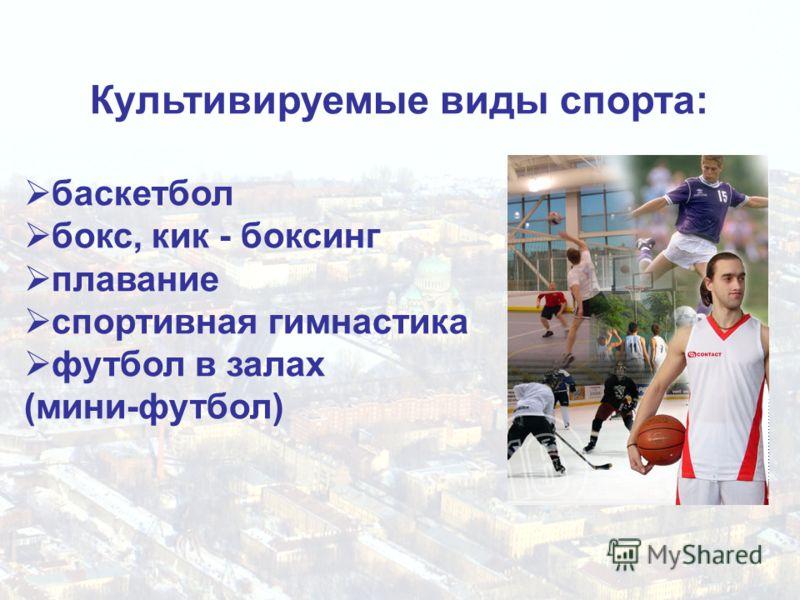 Культивируемые виды спорта: баскетбол бокс, кик - боксинг плавание спортивная гимнастика футбол в залах (мини-футбол)