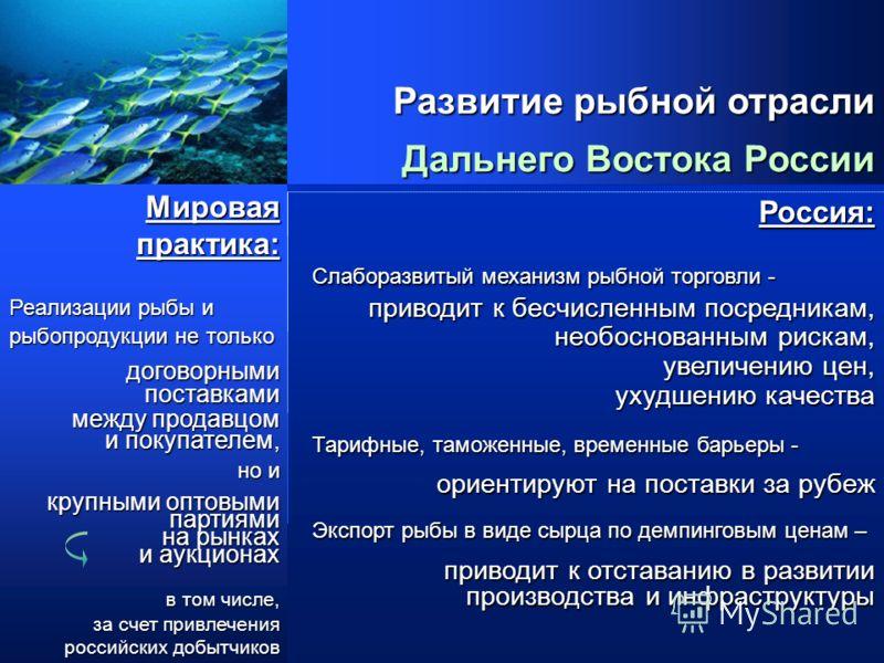 2005г. Управляющая компания «Рыбные ресурсы Приморья» представляет Бизнес проект внедрения Системы торгов «Рыбные ресурсы Приморья» Бизнес проект внедрения Системы торгов «Рыбные ресурсы Приморья»