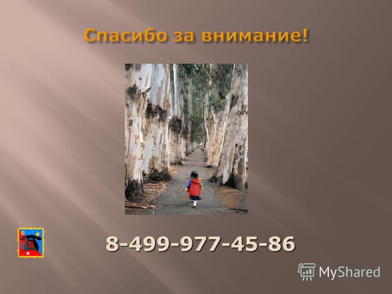 8-499-977-45-86