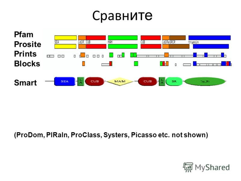 Pfam Prosite Prints Blocks Smart (ProDom, PIRaln, ProClass, Systers, Picasso etc. not shown) Сравн ите