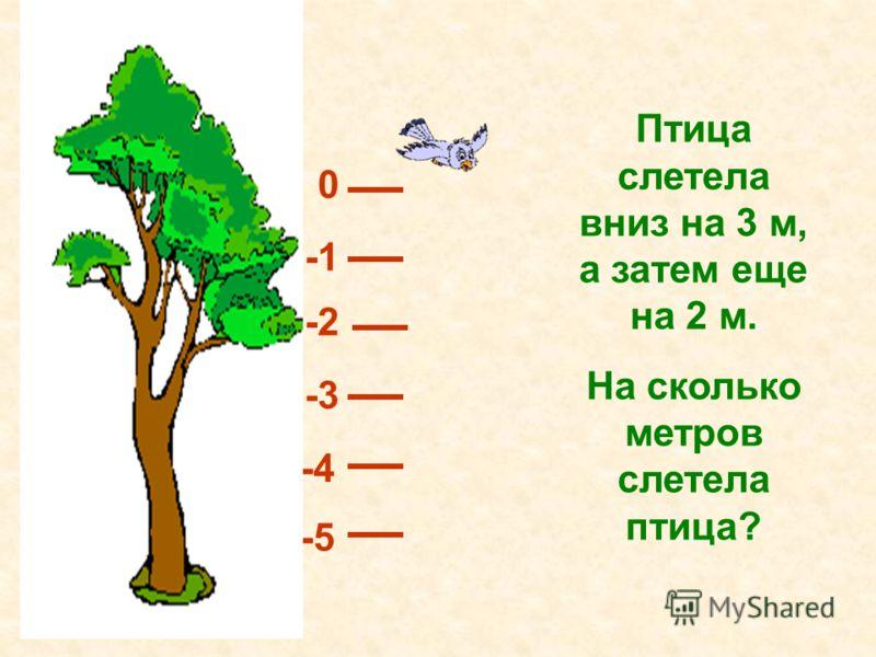 Птица слетела вниз на 3 м, а затем еще на 2 м. На сколько метров слетела птица? 0 -2 -3 -4 -5