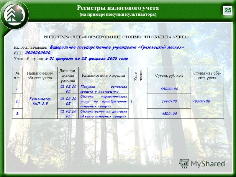 25 Регистры налогового учета (на примере покупки культиватора)