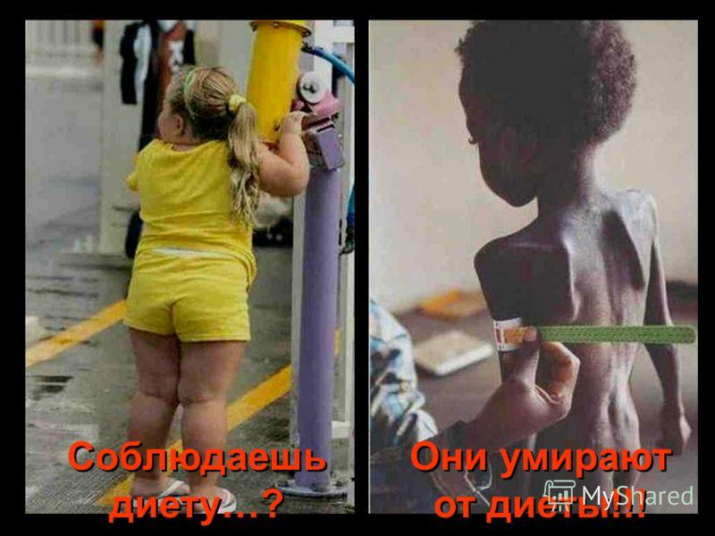 Соблюдаешь диету…? Они умирают от диеты!!!