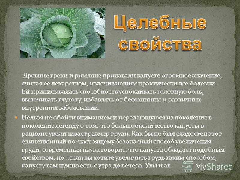 Древние греки и римляне придавали капусте огромное значение, считая ее лекарством, излечивающим практически все болезни. Ей приписывалась способность успокаивать головную боль, вылечивать глухоту, избавлять от бессонницы и различных внутренних заболе