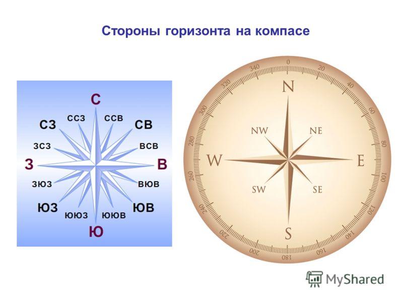 Стороны горизонта на компасе