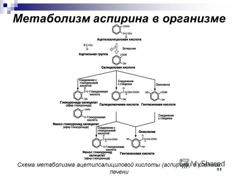Метаболизм аспирина в организме Схема метаболизма ацетилсалициловой кислоты (аспирина) в клетках печени 11