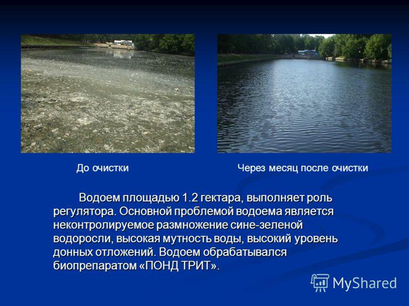 Водоем площадью 1.2 гектара, выполняет роль регулятора. Основной проблемой водоема является неконтролируемое размножение сине-зеленой водоросли, высокая мутность воды, высокий уровень донных отложений. Водоем обрабатывался биопрепаратом «ПОНД ТРИТ».