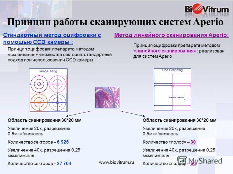 www.biovitrum.ru Принцип работы сканирующих систем Aperio Метод линейного сканирования Aperio: Принцип оцифровки препарата методом «склеивания» множества секторов: стандартный подход при использовании CCD камеры Принцип оцифровки препарата методом «л