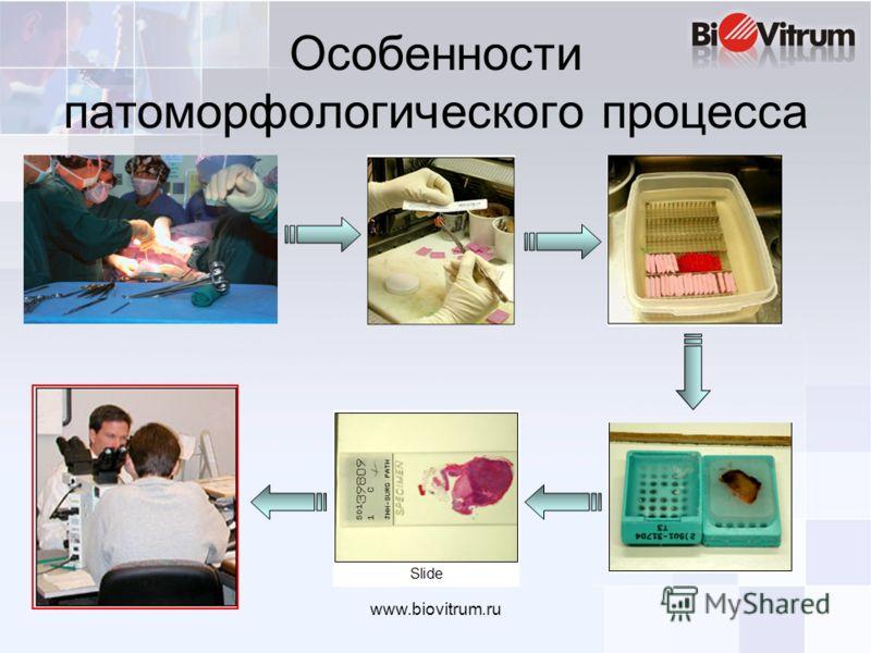 www.biovitrum.ru Особенности патоморфологического процесса